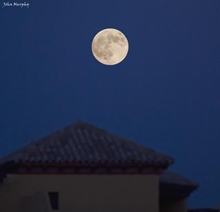 Estepona Moon
