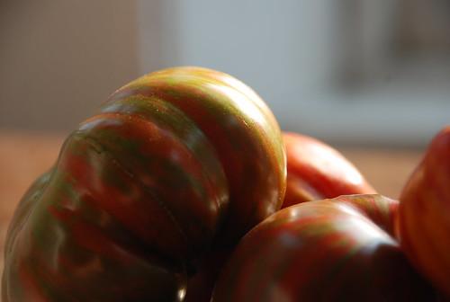 zebra tomatoes