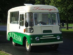Tracey's Traditional Ice Cream van - Phoenix Park, Dublin (front view) (RETRO STU) Tags: ireland dublin icecreamvan phoenixpark tracey'straditionalicecream