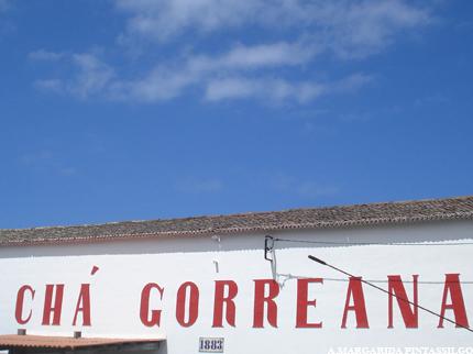 cha-gorreana-1
