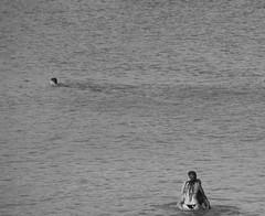 A Wandering Eye (c h r i s t o s) Tags: sea summer blackandwhite bw love beach square greek bay nikon couple mediterranean cyprus lovers relationship swimmers piggyback protaras konnos ysplixblack