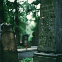 Jewish cementary VI (pavlov's.daughter) Tags: light red mamiya fuji snail poland polska krakow jewish cementary expired kraków cracow 800 cmentarz 105mm c330 zydowski żydowski nhgii