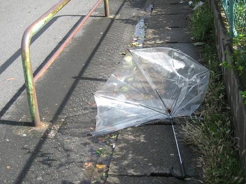 Paraguas modo tifon