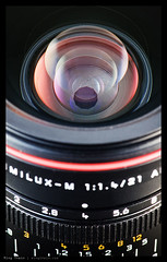 _D90_DSC7208 copy (mingthein) Tags: camera leica macro closeup nikon sb600 m equipment ming speedlight summilux asph diffuser afs d90 onn 2114 105vr strobist thein sb900 photohorologer mingtheincom