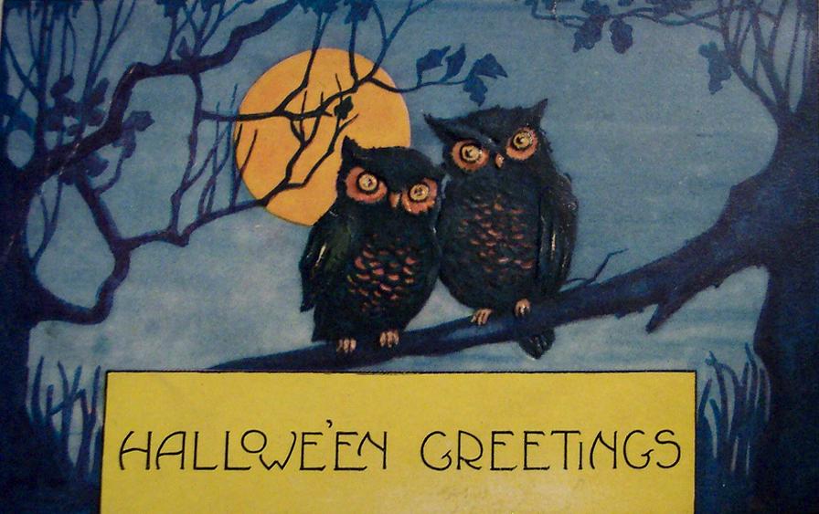 Owls2Corr