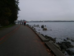 Seawall Run_1775