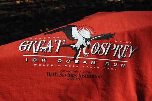 Great Osprey 19K 11072009 015