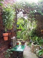 secret garden (Romany Soup) Tags: colour garden interiors
