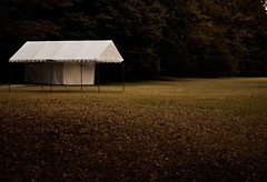 Meiji-jingu (Markus Bollingmo) Tags: park trees white field japan tokyo tent markus meijijingu bollingmo markusbollingmo