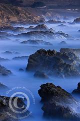 Primitive Coast II