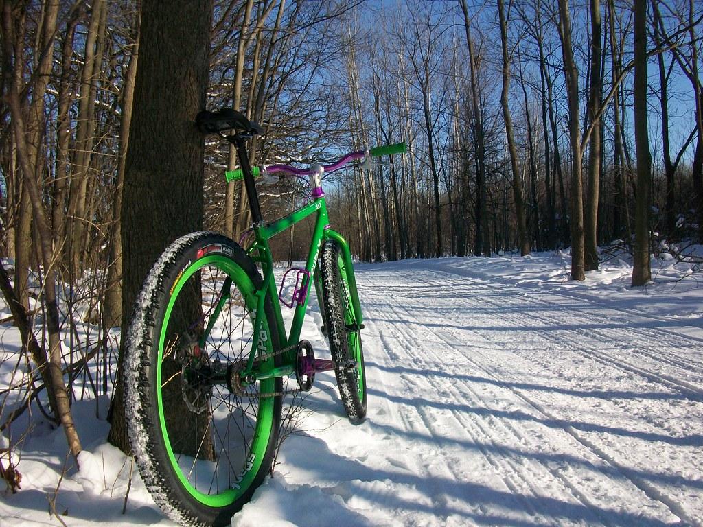 Snow Bike 2010