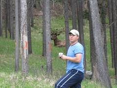 Caribou (Nick Jager) Tags: trip alaska jager
