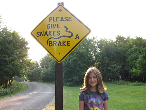 Give snakes a brake
