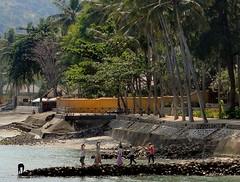 Headstones. Women at work on the New Harbor at Alang-Alang, Mangsit, Lombok, Indonesia (Rana Pipiens) Tags: indonesia harbor women 1001nights seashore lombok hardlabor quarriedstone alangalangmangsitlombok