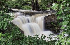 Sheldrake Falls (JMS2) Tags: water river flow waterfall falls rapids rush cascade larchmont weschestercounty sheldrakeriver