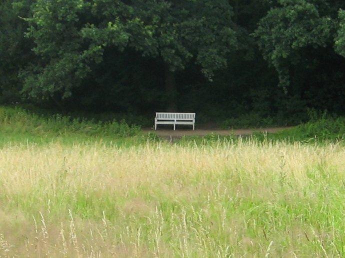 Schlosspark4 061
