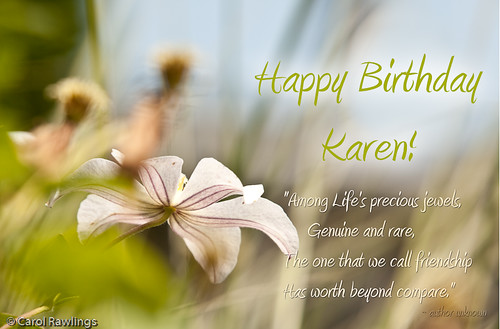 Beneath ice · Sky Scribbles · Happy Birthday Karen (kvonk)