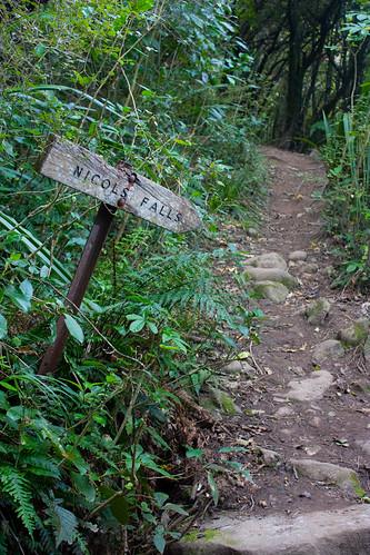 Nichols Falls Sign