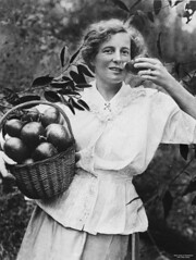 Woman with a basket of mandarins, 1920-1930