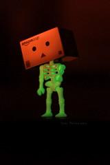 Halloween Danbo!! (sⓘndy°) Tags: sanfrancisco toy toys box figure figurine sindy kaiyodo yotsuba danbo revoltech danboard 紙箱人 阿楞 amazoncomjp
