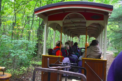pumpkin train 2