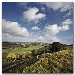 This green and pleasant land. South Wight Landscape Photography
