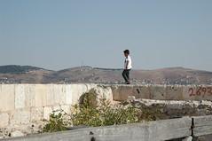 Views from atop Saracens' Castle at Ajlun (Debarella) Tags: amman day17 egyptianholidaygoestojordan