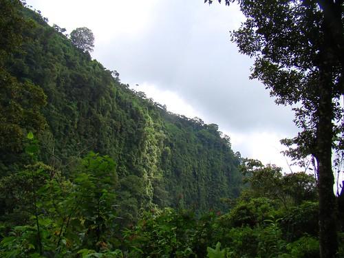 Viaje a la cascada Muxbal (69)