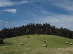 Ardèche,  haystacks (Sokleine) Tags: france nature rural de hiking south haystacks campagne sud foin ardèche meule