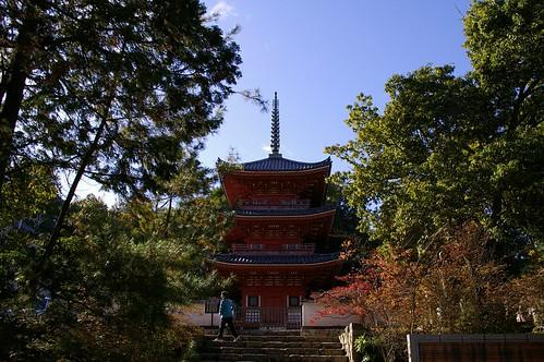 宝福寺三重塔 #8