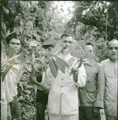 People of Talaud Islands with plant specimens