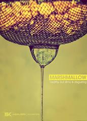 Marshmallow - healthy, but slimy & disgusting (Srdjan Kirtic) Tags: cold healthy nikon slim tea health flue sick liquid slimy