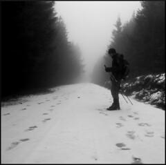 dana hilliot - december again and again and again