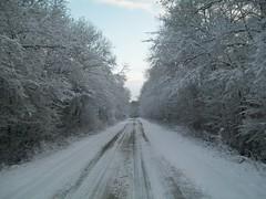 Polebrook (steve kirk photos) Tags: winter snow wintery polebrook