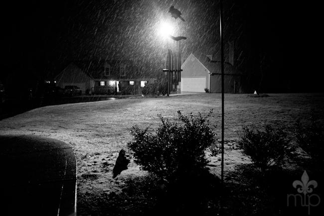 Snow in Dawsonville