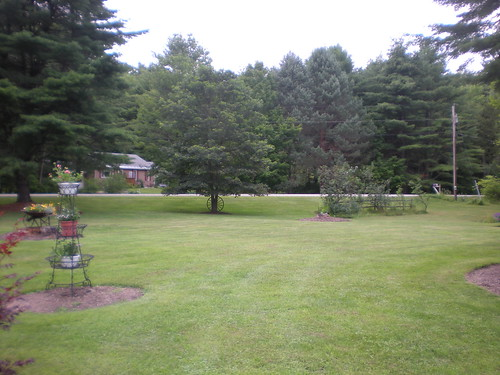 Front yard in Hidden Valley