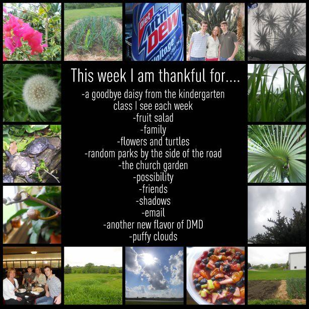 Thankful this Week