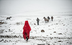 Afghanistan, Pamir (silvia.alessi) Tags: ngc afghanistan snow white yurt red kyrgyz horse travel adventure pamir wakhan mountain shepherd girl lonelyplanet