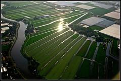 Sunlit Holland I