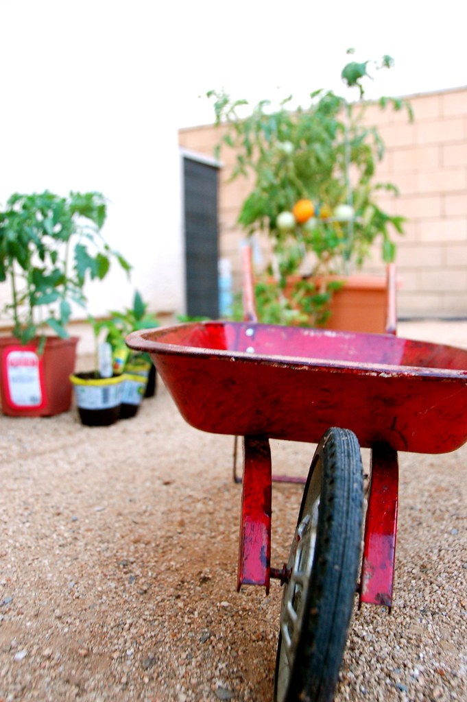 true's vintage wheelbarrow