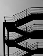 Stair (f e r e l m a f e) Tags: blancoynegro valencia puerto stair raw exterior paloma escalera cielo silueta peldaos subebaja bajasube