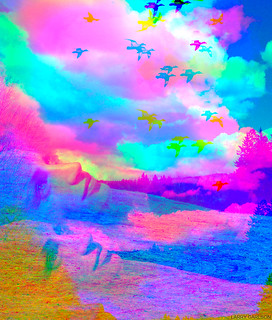 LARRY CARLSON, Colorized Afternoon, 2007.