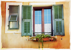 Italian Windows #5, Laigueglia (h_roach) Tags: windows italy photoshop reflections vines explore textures shutters windowbox laigueglia mywinners