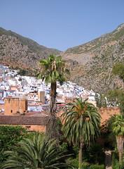Chaouen desde la Kasbah (NeoYas) Tags: palmeras morocco maroc chaouen montaa marruecos
