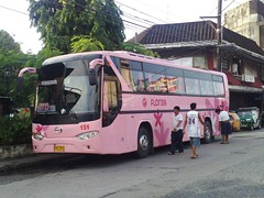 GV Florida 151 (Api II =)) Tags: bus del golden dragon florida transport monte 151 gv dmmc