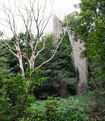 Finavon Castle (2)