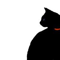 pisica_neagra