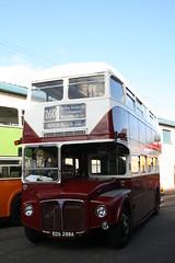 GVVT 2009 (Thomas S Cook) Tags: bus museum canon vintage geotagged eos scotland efs1855mm bridgeton gvvt 400d 111009 fordneukst 11thoctober2009
