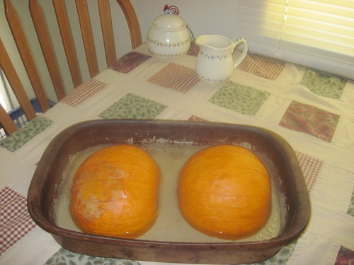 Place pumpkin in dish with water