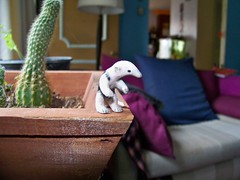 Baby anteater figurine gift